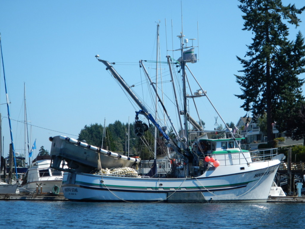 Beautiful Fishing trawlers in Gig Harbour