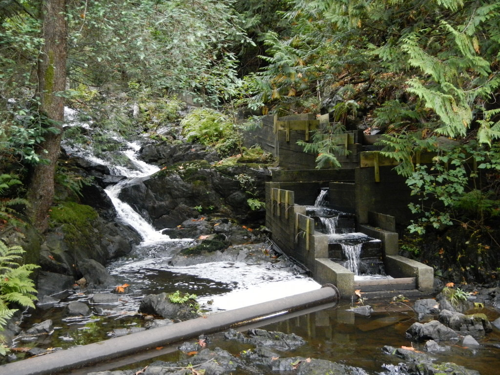 Fish Ladder in the mountains