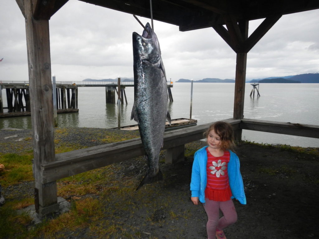 King Salmon Fishing Competition