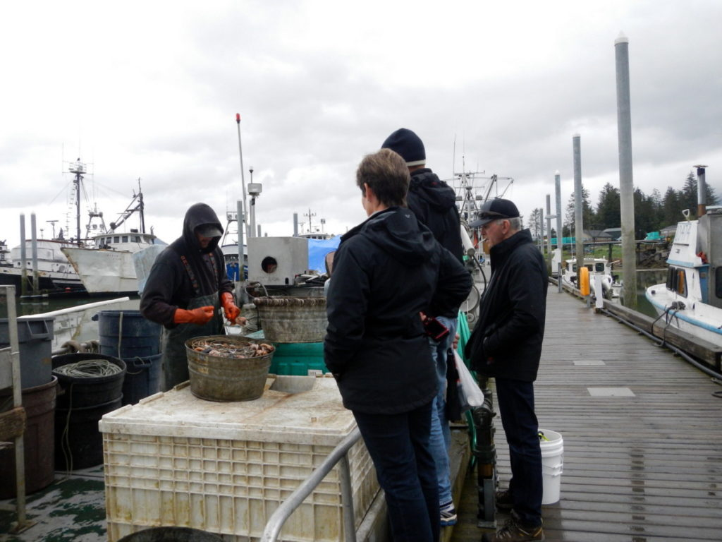 Looking on how bait was prepared for Halibut