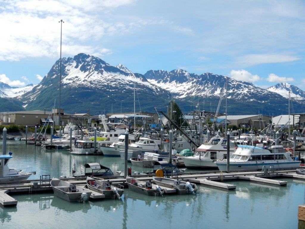 Scolamanzi in great company in Valdez