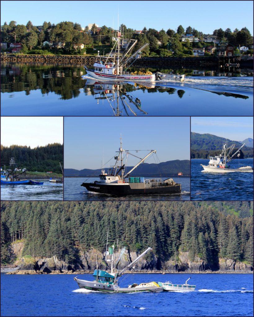 370 Kodiak Town1