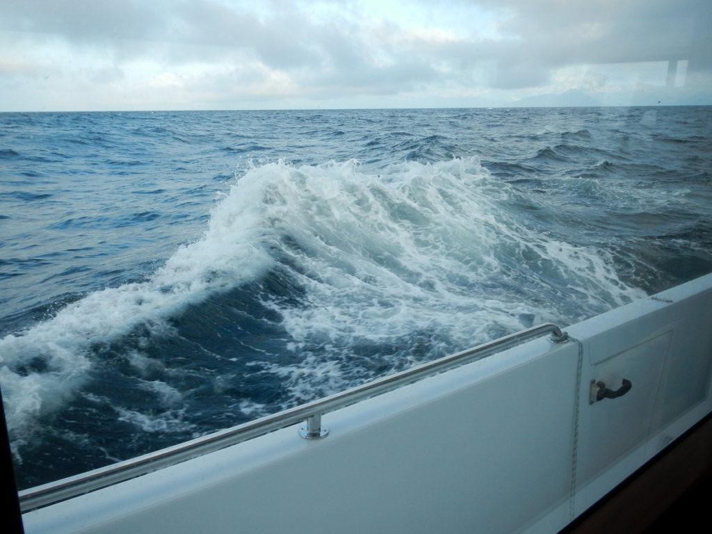 Rough seas in Shelikof Strait
