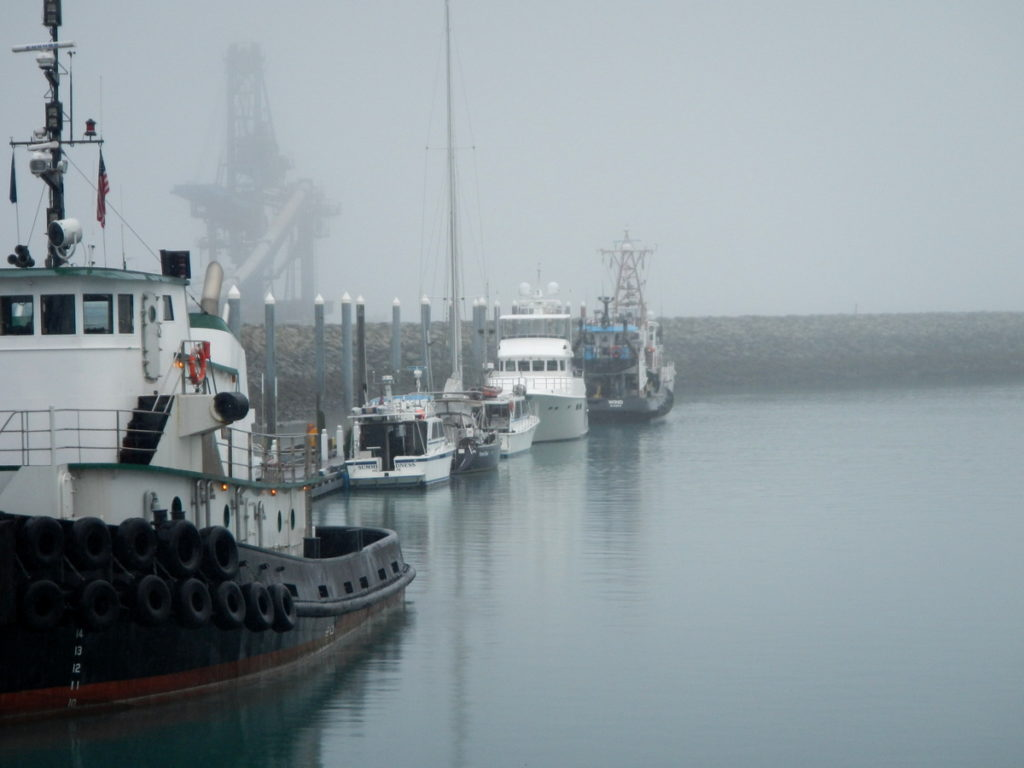 Misty mornings in Seward