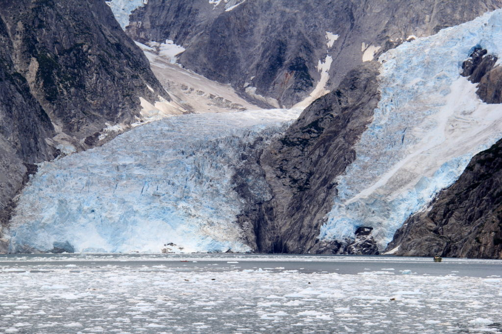 View Finder, a tourist sightseeing boat at North west Glacier ! How small does she look!