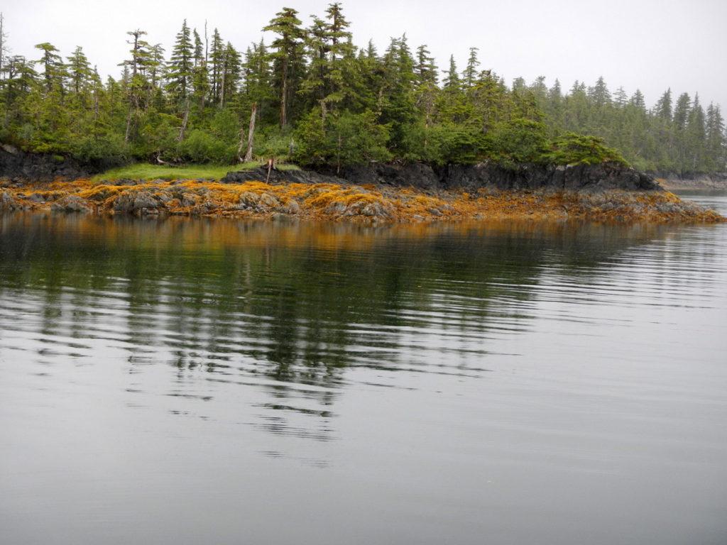 Calm anchorage in Surprise Cove
