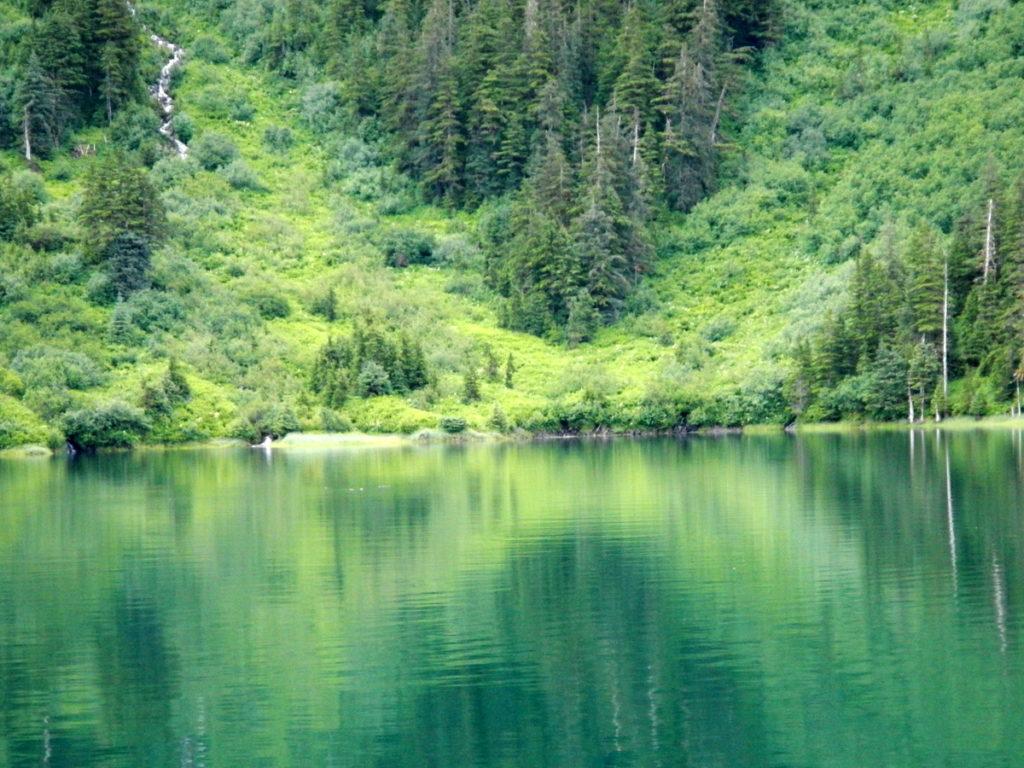 Beautiful Bettles Lagoon