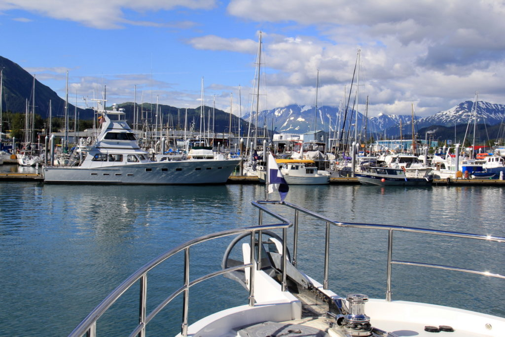 Scolamanzi's view of the harbour in Seward