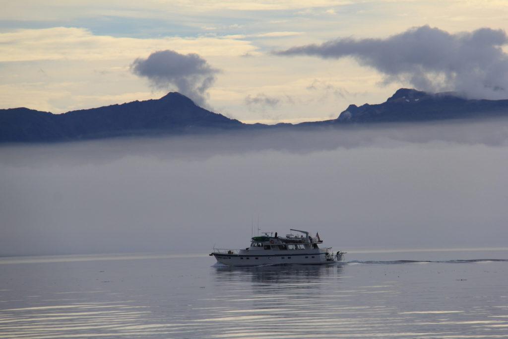 Very misty