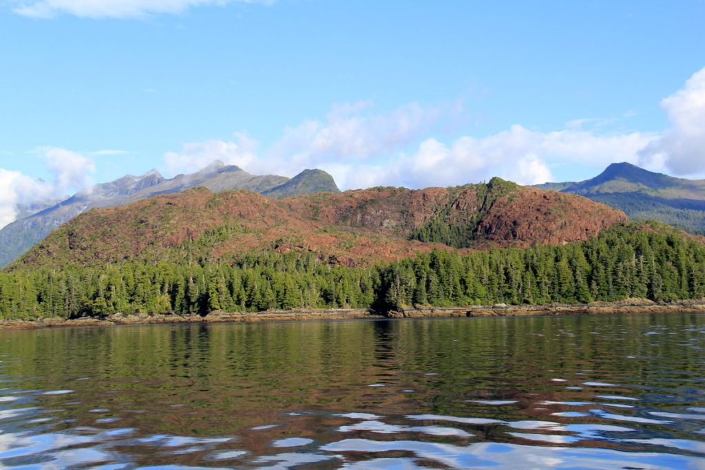 Red bluff - the only place in Alaska where these red rocks are to be found