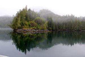 Beautiful misty morning